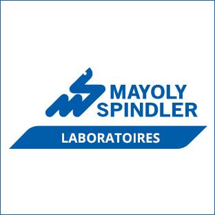 MayolySpindler